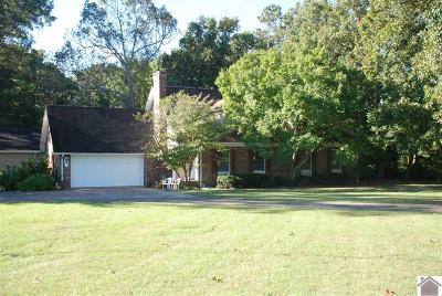 Calloway County, Marshall County Single Family Home For Sale: 3195 S 121
