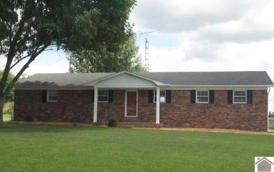 Graves County Single Family Home For Sale: 6032 St. Rt. 1241