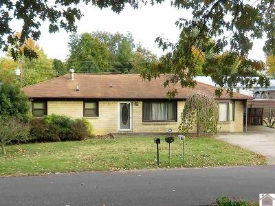 Marshall County Single Family Home For Sale: 575 Elm St.