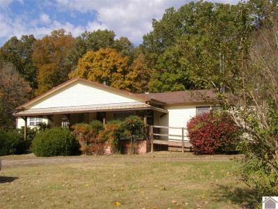 Benton Single Family Home For Sale: 687 Reed Rd.