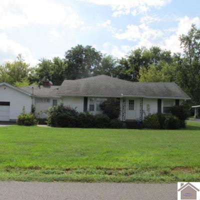 McCracken County Single Family Home For Sale: 225 Cumberland Ave.