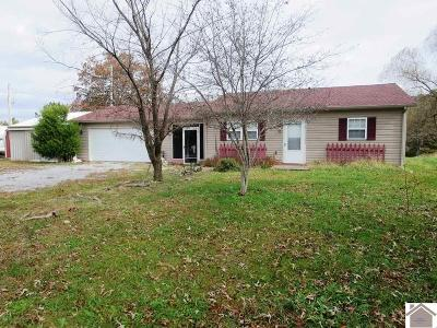 Marshall County Single Family Home For Sale: 494 Beasley Rd.