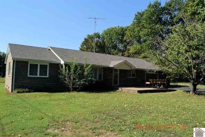 Calloway County Single Family Home For Sale: 4143 S State Route 121