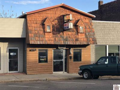 Marshall County Commercial For Sale: 1109 Poplar Street