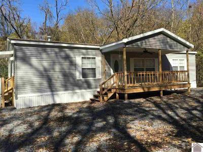 Cadiz Manufactured Home For Sale: 268 Lake Vista Drive