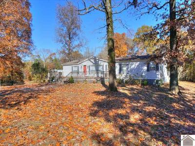 Calloway County Manufactured Home For Sale: 1154 Poplar Springs Dr.