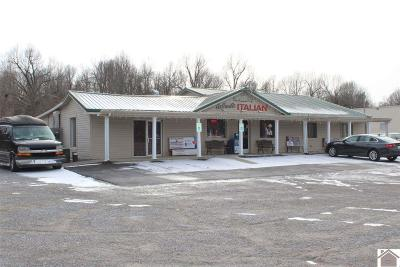 Marshall County Commercial For Sale: 3885 Us Hwy 62