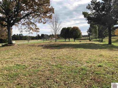 Marshall County Residential Lots & Land For Sale: 209 Forbing Lane