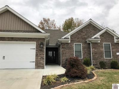 McCracken County Single Family Home For Sale: 5355 Shelldrake Lane