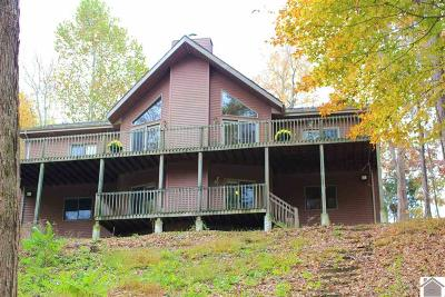 Cadiz, Trigg County, Eddyville, Kuttawa, Grand Rivers Single Family Home Contract Recd - See Rmrks: 50 Treadway Lane