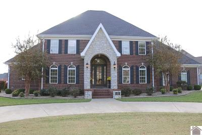 Murray Single Family Home For Sale: 158 Rippling Creek Drive
