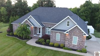 Paducah Single Family Home For Sale: 380 Cimarron Way