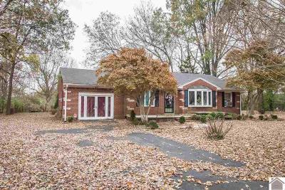 McCracken County Single Family Home For Sale: 8760 Ogden Landing Rd