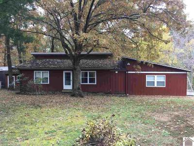 Calloway County Single Family Home For Sale: 401 Cross Spann Road