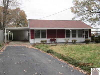 Paducah Single Family Home For Sale: 3213 Minnich Ave