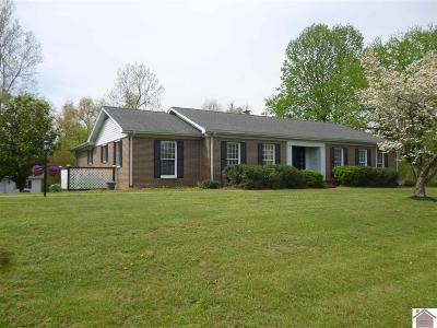 McCracken County Single Family Home For Sale: 220 Brenna Dr