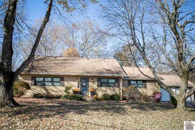 Calloway County Single Family Home For Sale: 1600 Keenland