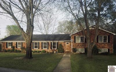 Calloway County Single Family Home For Sale: 1101 Meadow Ln