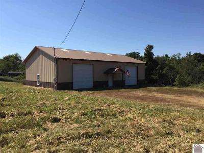Calloway County Single Family Home For Sale: 39 Magness Rd