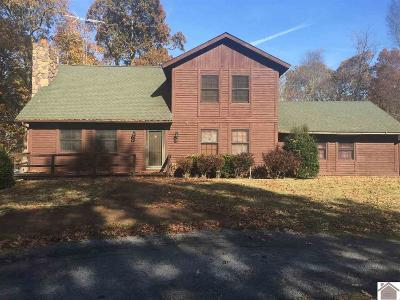 Lyon County, Trigg County Single Family Home For Sale: 105 Log Cabin Drive