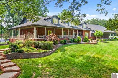 Caldwell County, Calloway County, Livingston County, Marshall County, Trigg County Single Family Home For Sale: 32 Wrenwood Lane
