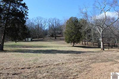 Calloway County Residential Lots & Land For Sale: Lot 285 Lakeshore Drive