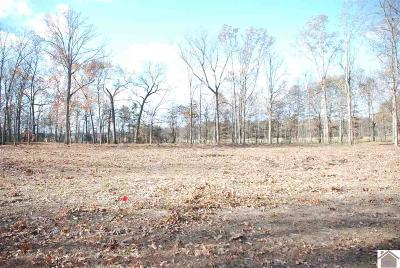 Calloway County Residential Lots & Land For Sale: Kaitlyn