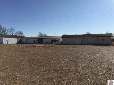 Marshall County Commercial For Sale: 85 Kashway Ln