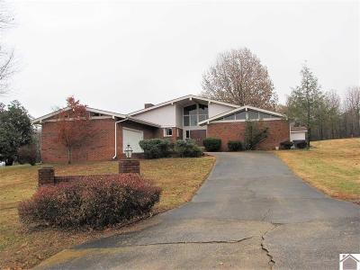 Gilbertsville Single Family Home Contract Recd - See Rmrks: 192 Rockcastle