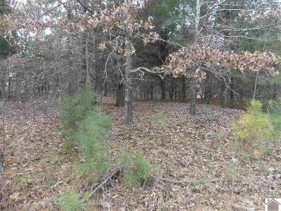 Calloway County Residential Lots & Land For Sale: 230 Nighthawk Drive (Lt# 414, 15, 16)