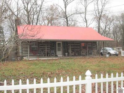 Princeton, Eddyville, Kuttawa, Cadiz Single Family Home For Sale: 36 Crappie Road