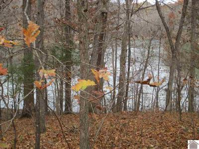 Livingston County, Lyon County, Trigg County Residential Lots & Land For Sale: Champion Hills