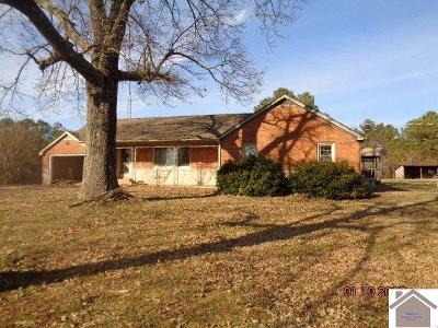 Marshall County Single Family Home For Sale: 5665 Aurora Hwy