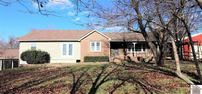 McCracken County Single Family Home For Sale: 7800 Wice Church Road