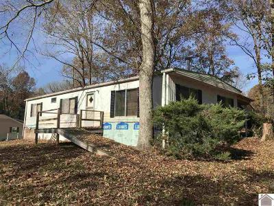 Manufactured Home For Sale: 60 Upchurch Rd