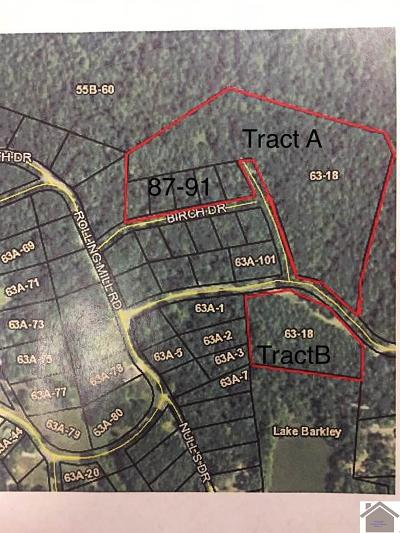 Residential Lots & Land For Sale: Birch Dr