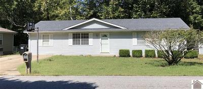 Princeton, Eddyville, Kuttawa, Cadiz Single Family Home For Sale: 152 Pebble Creek