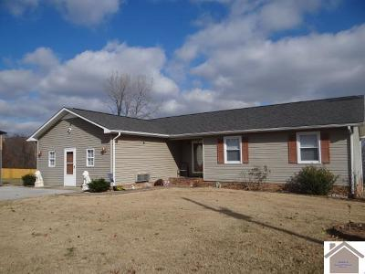 Princeton, Eddyville, Kuttawa, Cadiz Single Family Home For Sale: 151 Jenny Ln