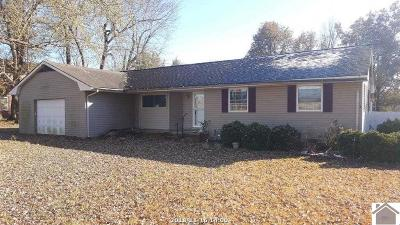 McCracken County Single Family Home For Sale: 8220 Ogden Landing Road