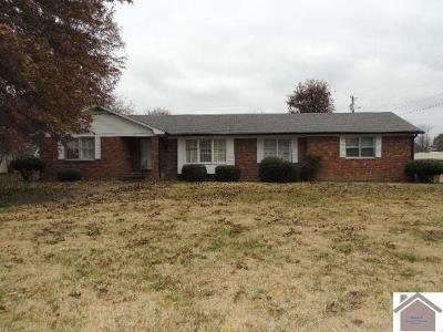 Graves County Single Family Home For Sale: 201 Galahad