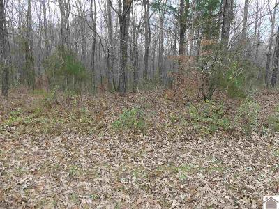Calloway County Residential Lots & Land For Sale: 912 Wildcat Drive (Lt# 241)
