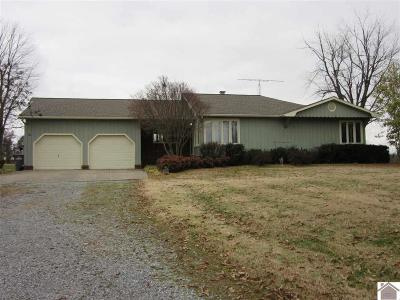 Graves County Single Family Home For Sale: 3096 W St Rt 339