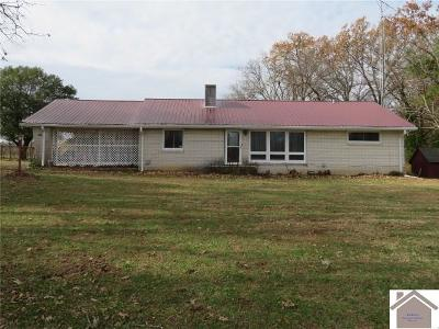 Calloway County Single Family Home For Sale: 917 Potts Road