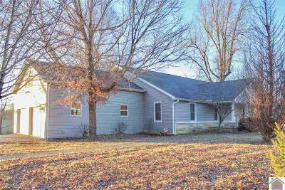 Benton Single Family Home For Sale: 2041 Mt Moriah Rd