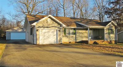 Princeton, Eddyville, Kuttawa, Cadiz Single Family Home For Sale: 114 Danielle Ave