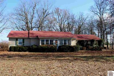 Calloway County, Marshall County Single Family Home For Sale: 812 Coopertown Road