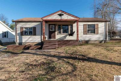 Calloway County, Marshall County Single Family Home For Sale: 533 Cherry Street