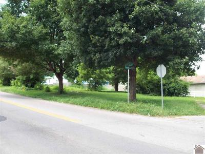 Caldwell County Residential Lots & Land For Sale: 200/202 Legion Dr