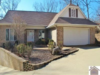 Princeton, Eddyville, Kuttawa, Cadiz Single Family Home For Sale: 63 Washington Way