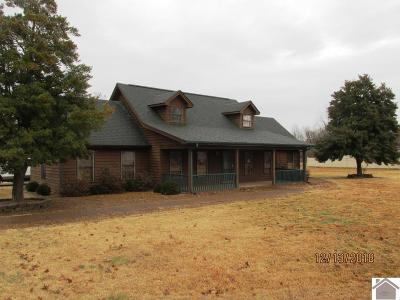 McCracken County Single Family Home For Sale: 9715 Enlow Drive